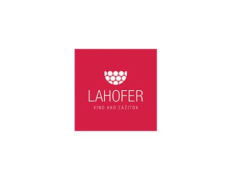 Lahofer Hanzel Juicy Ladies online marketingova agentura